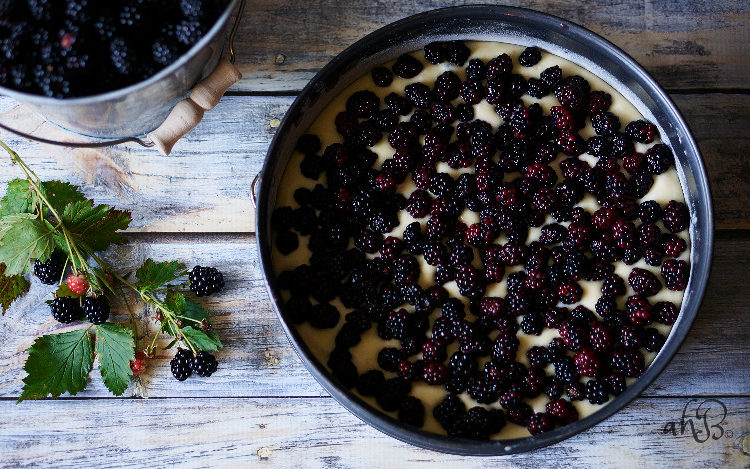 Blackberry Crumb Kuchen