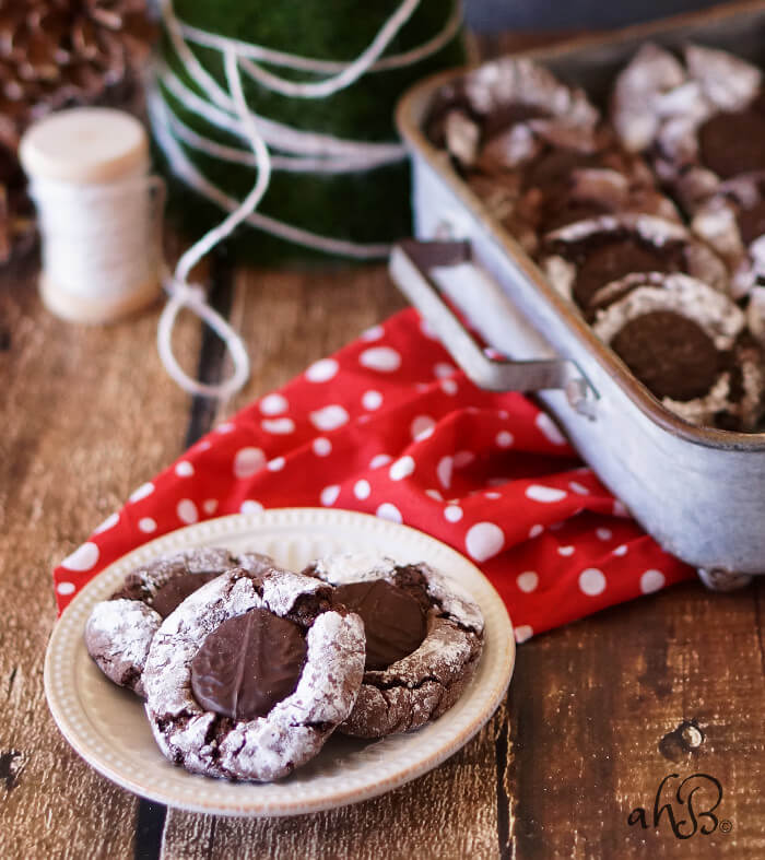 Mint Fudge Crinkle